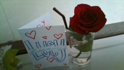 red-rose-and-card-for-valentines-day-1
