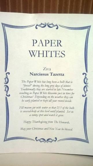 paper-white-insert-blog