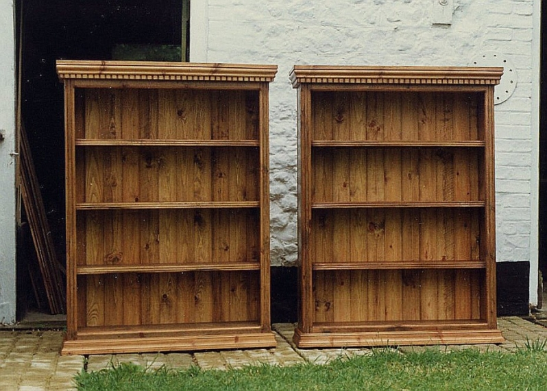 Twin Bookcases with dental pattern