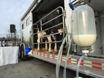 Mobile Dairy Classroom Experience.