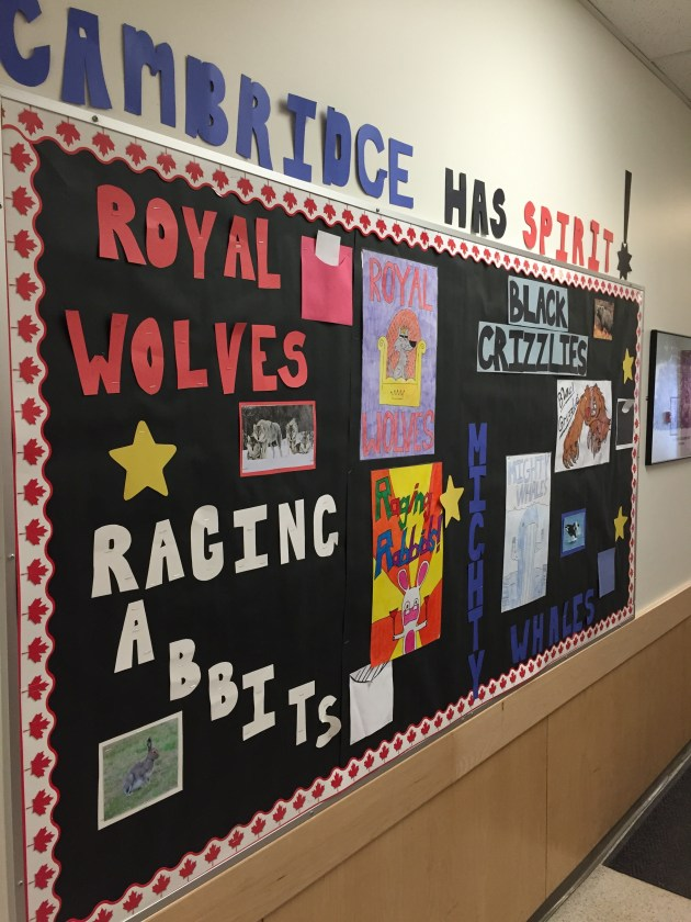 Student created house team posters.