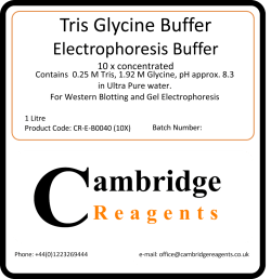 Tris Glycine buffer for electrophoresis