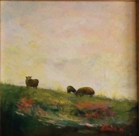 Merecki-sheep