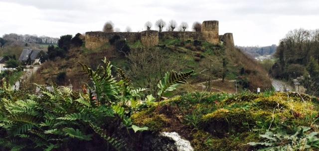 Le vieux château ducal