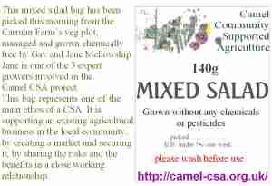 salad-bag-camel csa 28-08-09