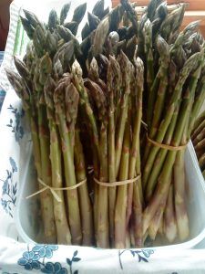 Cornish-asparagus-camelcsa-140510