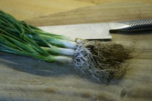 spring-onions-camelcsa