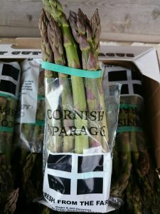 cornish asparagus portrait