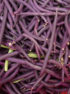french-beans-camelcsa-160617