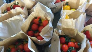 tomato-bags-camelcsa-290917