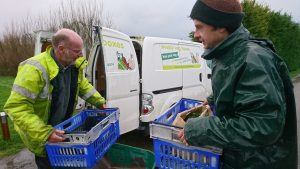 loading-vegboxes-delivery-van-camelcsa-180119