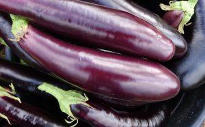 aubergines-camelcsa-060919
