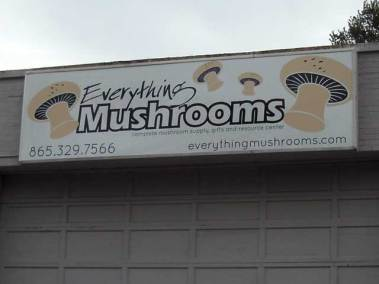 everythingmushrooms