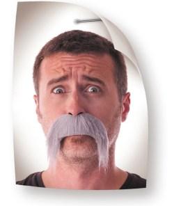 moustaches kéké grises