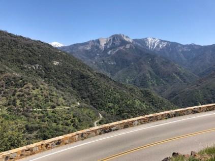 Sequoia National Park Road