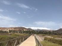 Jandia Salt Marsh Boardwalk