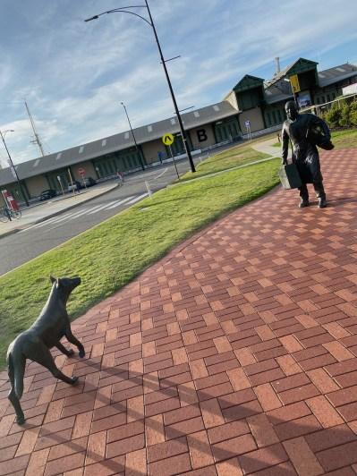 Man & Dingo at the ferry port