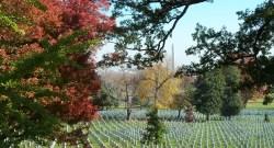 Arlington Cemetery videographer
