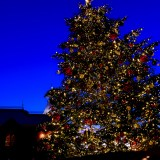 恵比寿クリスマスツリー