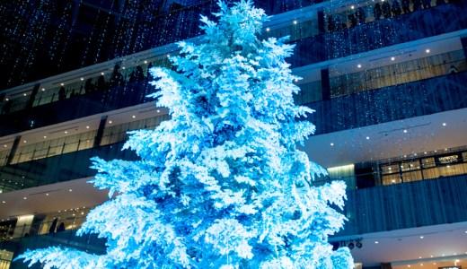 東京丸の内KITTE 屋内では最大級のクリスマスツリー