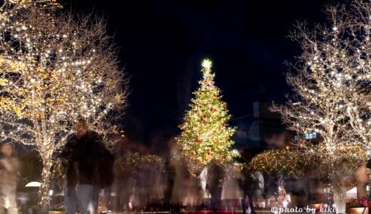 恵比寿ガーデンプレイス 輝くシャンデリア&クリスマスツリー