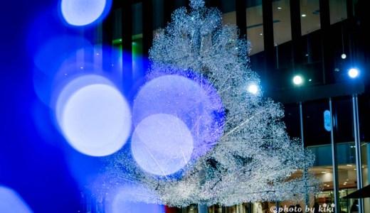 輝くクリスタルツリー 東京ガーデンテラス紀尾井町