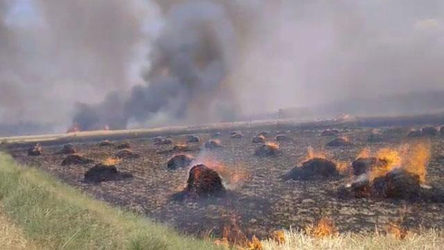 Wheat Crops Fire