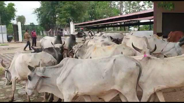 Bajrang Dal Balaghat