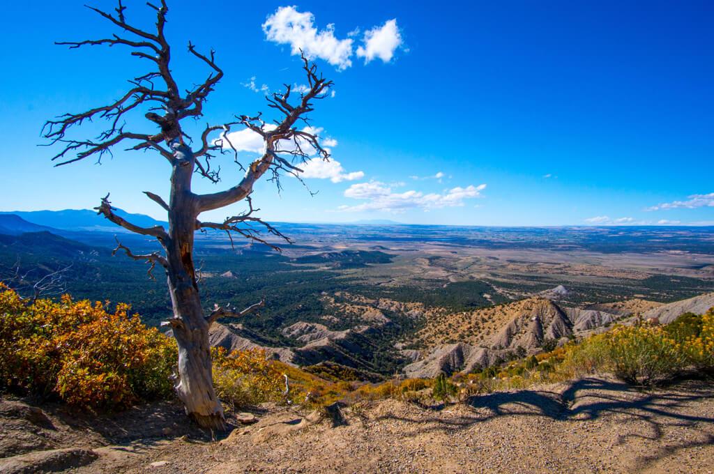 Montezuma Valley Overlook, Mesa Verde National Park