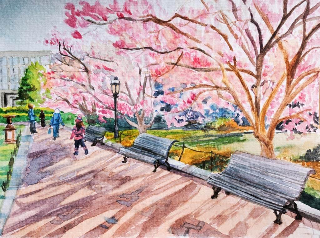 Enid A. Haupt Garden Magnolias watercolor painting
