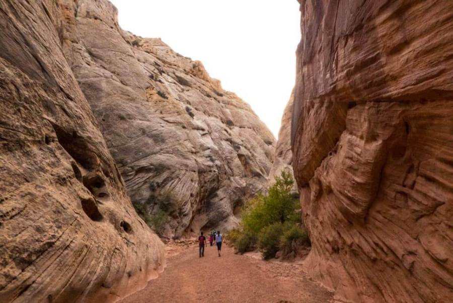 Walking on Capitol Gorge Trail.