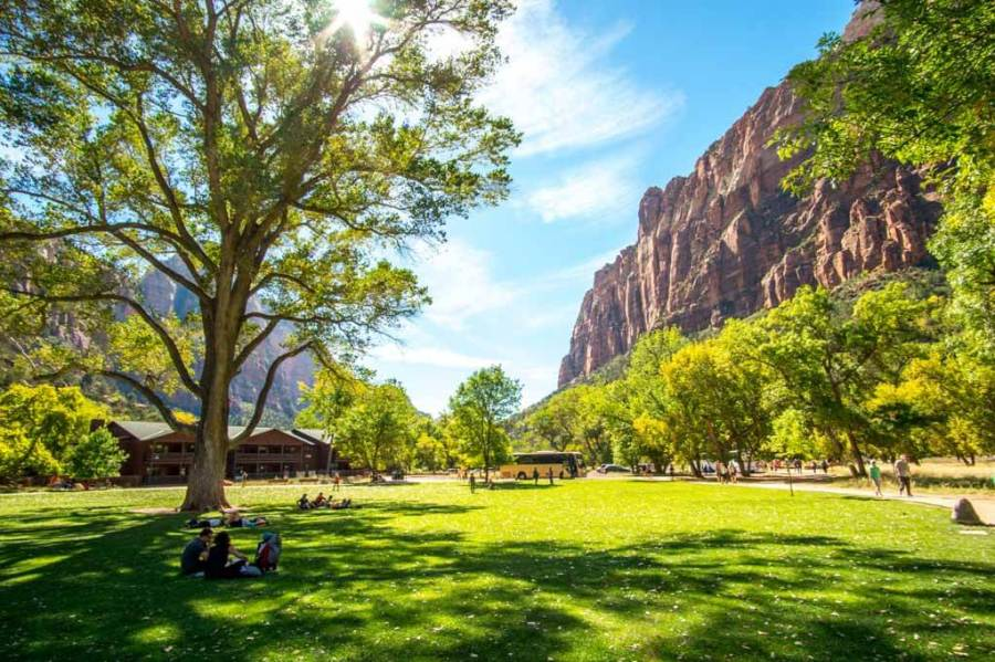 Zion Park Lodge grass and shade trees