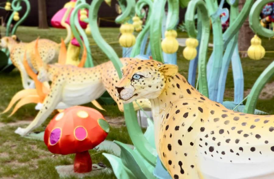 Chinese Lantern Festival 2017, Franklin Square, Philadelphia. Leopard display.