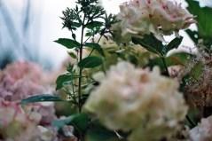 photo05_2a