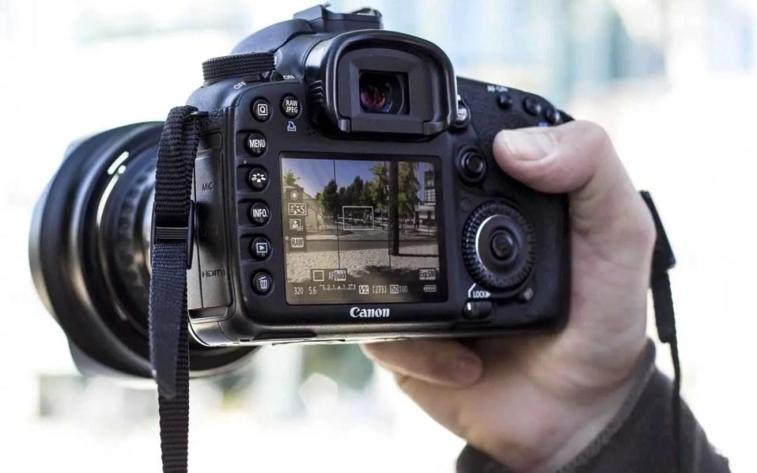 Canon, Nikon DSLRs shot most World Press Photo 2019 images