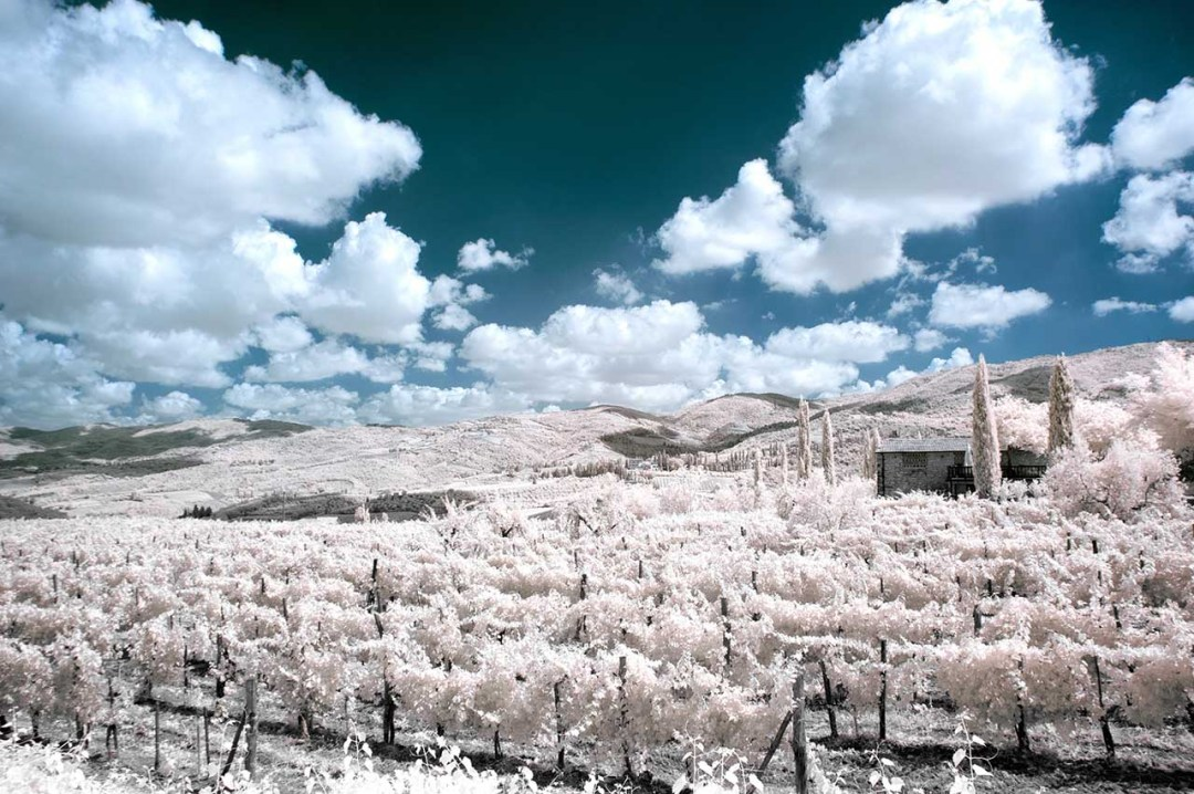 Landscape photography ideas: 09 Shoot infrared