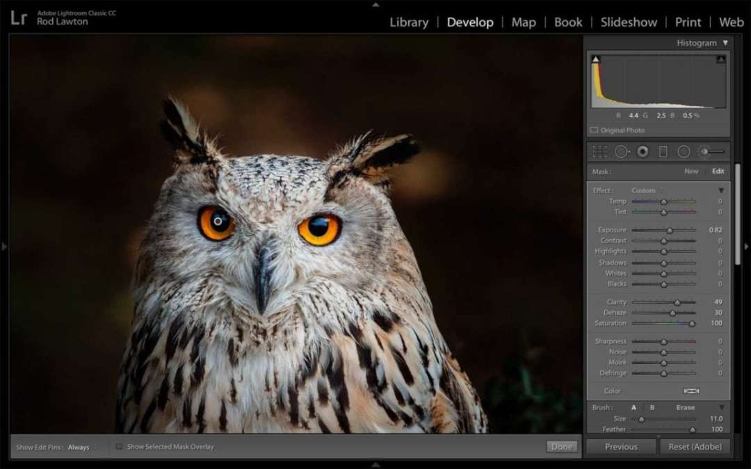 Lightroom Classic Review: Color Range masking