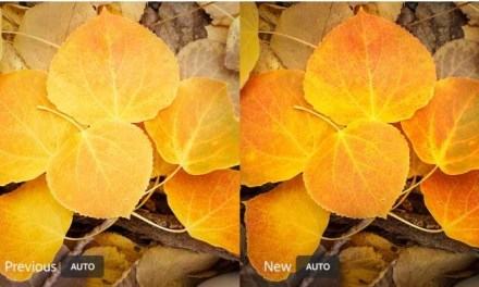 Adobe updates Lightroom CC and Classic with new tools