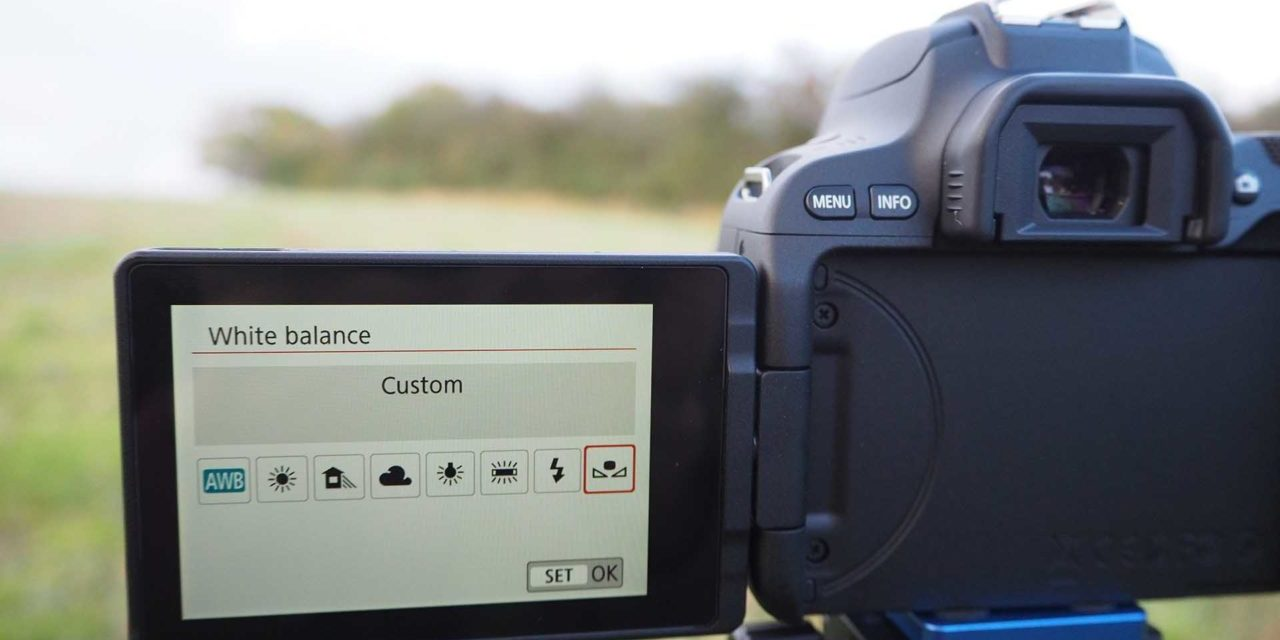 Canon EOS 200D / Rebel SL2: How to set a custom white balance