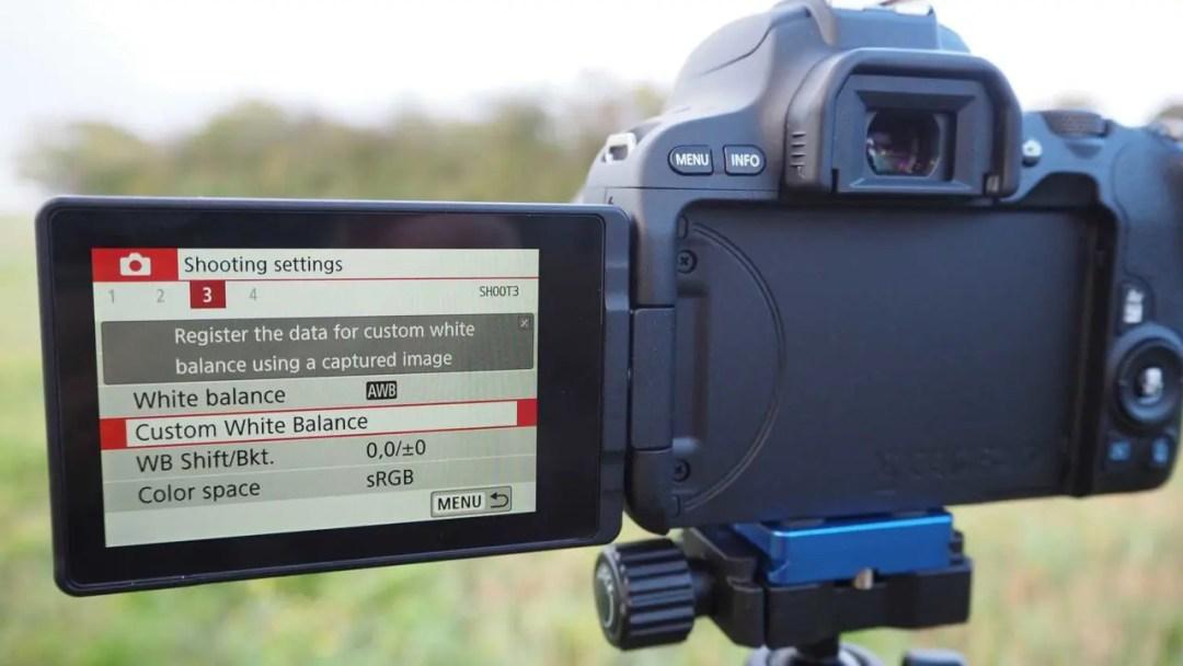 Setting a custom white balance in the Canon 200D / Rebel SL2 Guided Menu