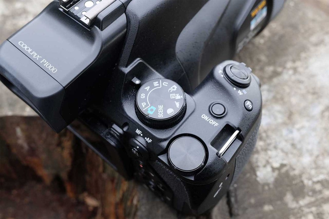 Nikon P1000 Review: features