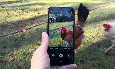 Huawei Mate 20 Lite camera review