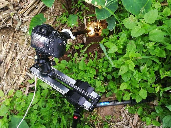 เลนส์ Laowa Macro 24mm F14 เลนส์เทพสำหรับงาน Macro และงาน Cinema (10)