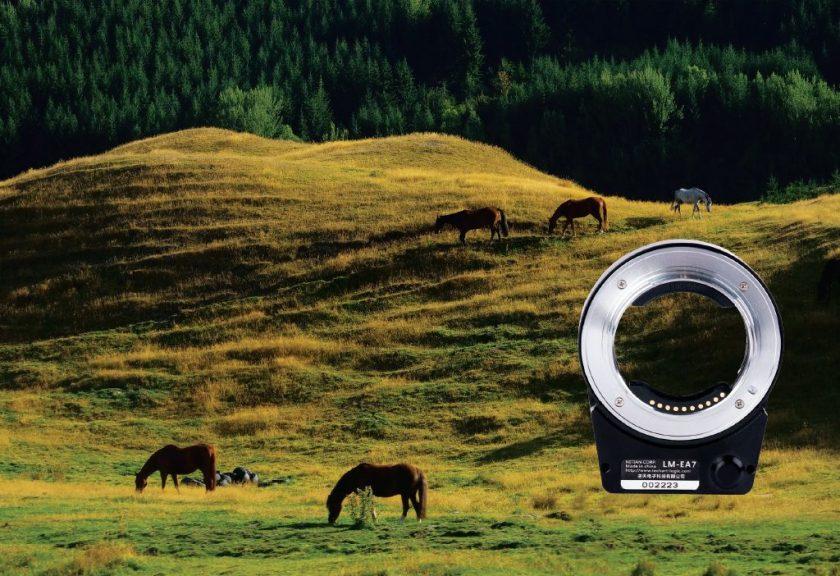 รีวิว Techart Pro เปลี่ยนเลนส์มือหมุนให้กลานเป็น Auto Focus