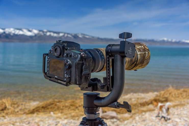 พรีวิว SunwayFoto GH-01 Gimball Head ตัวช่วยสำคัญในการถ่ายนก