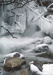 Icicles around stream, Jasper, Alberta. Photo by Brent VanFossen