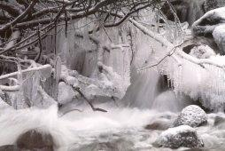 In extreme cold conditions, icicles form along streams, photo by Brent VanFossen