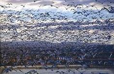 Birds in Flight by Brent VanFossen