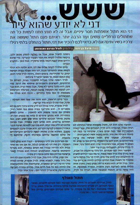 Enlarged article about Dahni