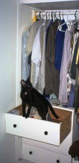 Dahni explores the clothing closet and a few drawers, photo by Lorelle VanFossen